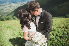 Beautiful young couple on their wedding day. Portraint close-up Royalty Free Stock Photo