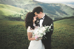 Beautiful young couple on their wedding day. Portraint close-up Royalty Free Stock Photography