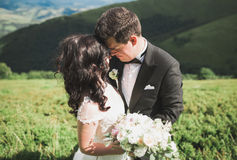 Beautiful young couple on their wedding day. Portraint close-up Stock Photography
