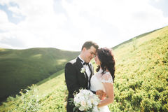 Beautiful young couple on their wedding day. Portraint close-up Royalty Free Stock Images