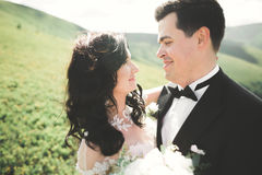 Beautiful young couple on their wedding day. Portraint close-up Stock Image