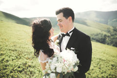 Beautiful young couple on their wedding day. Portrait close-up Stock Image