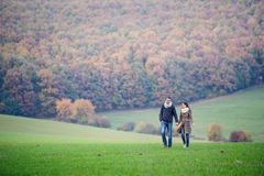 Beautiful young couple on a walk. Colorful autumn nature. Beautiful young couple on a walk, holding hands. Colorful autumn nature Stock Photos