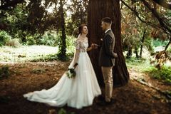 Sun illuminates tender faces of pretty wedding couple hugging in. Beautiful young couple walking in the autumn park smiling brightly Royalty Free Stock Images