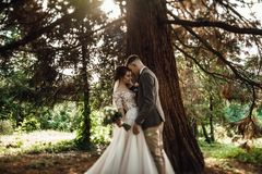 Sun illuminates tender faces of pretty wedding couple hugging in. Beautiful young couple walking in the autumn park smiling brightly Stock Photography
