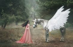 Beautiful, young elf, walking with a unicorn in the forest She is dressed in a long orange dress with a cloak. The plume beautiful. Ly waves in the wind royalty free stock photo