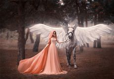 Beautiful, young elf, walking with a unicorn. She is wearing an incredible light, white dress. Art hotography stock photo