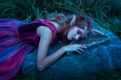 Beautiful young elf woman Stock Photos