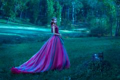 Beautiful young elf woman royalty free stock photography