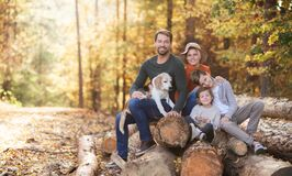 Beautiful young family with small children and dog sitting in autumn forest.