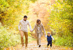 Beautiful young family on a walk in autumn forest. Beautiful young family on a walk in forest, running. Mother and father with their little son in warm clothes royalty free stock photo