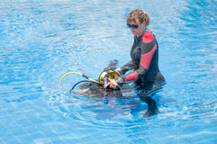 Female Divers Royalty Free Stock Image