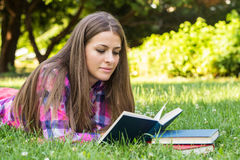 Beautiful young female reading a book Stock Photography