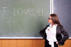 Beautiful young female teacher Royalty Free Stock Photo