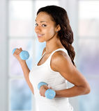 Beautiful young fit woman working out with dumbbells Stock Photography