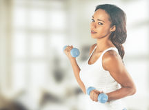 Beautiful young fit woman working out with dumbbells Stock Image