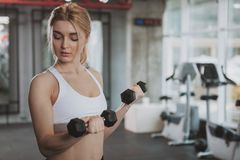 Beautiful young fitness woman working out at the gym stock images