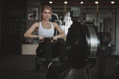 Beautiful young fitness woman working out at the gym royalty free stock image