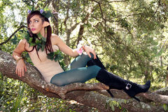 Beautiful Young Forest Elf (12) Royalty Free Stock Photography