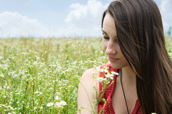 Beautiful young girl. Portrait of beautiful young girl on a summer meadow in a sunny day Royalty Free Stock Photo