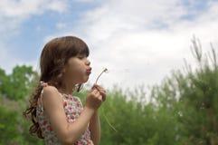 Beautiful young girl blow dandelion outdoor Stock Photos