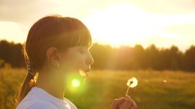 Beautiful young girl blowing on white fluffy dandelion. Dandelion seeds fly through the air at sunset. Slow motion. Beautiful young girl blowing on white fluffy stock video