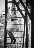 Beautiful young girl in bra and jeans sitting on metallic staircase. Black and white Royalty Free Stock Image
