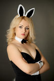 Beautiful young girl in a bunny suit Royalty Free Stock Image
