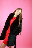 Beautiful young girl in coat Stock Photos
