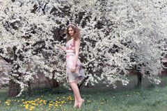 Beautiful young girl with curls in an air colored dress with a wreath on her head walking in the park near a cherry blossom Royalty Free Stock Photos