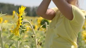 Beautiful young girl is dancing beautifully while standing in a field with sunflowers. slow motion stock video