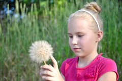 Beautiful, young girl with dandelions. Beautiful, young blonde girl with white dandelions Royalty Free Stock Image