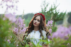 Beautiful young girl in a field on the background colors stock images