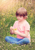 Beautiful young girl on field Royalty Free Stock Photos