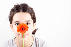 Girl with flower. Beautiful young girl with flower on white background Stock Photos