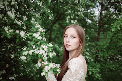 Beautiful young girl in a flowering lilac. Beautiful young girl in a flowers. Garden of flower bloom Royalty Free Stock Image