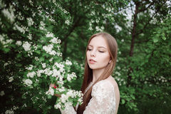 Beautiful young girl in a flowering lilac. Garden of lilac bloom Royalty Free Stock Images