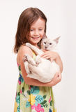 Beautiful young girl holding a cat. Stock Photo