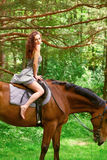 Beautiful young girl on horse. In dress in forest Royalty Free Stock Photos