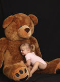 Beautiful young girl with huge bear Royalty Free Stock Photography