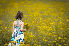 Beautiful young girl picking flowers on a sunny day. Beautiful young girl in a dress picking flowers in a field on a sunny day 2 Royalty Free Stock Images