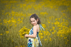 Beautiful young girl picking flowers on a sunny day. Beautiful young girl in a dress picking flowers in a field on a sunny day Stock Image