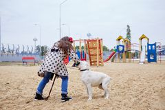 Beautiful young girl playing with dog outdoors. Pet concept. Cute girl kid with doggie playing in the playground. Having fun together outdoors on the nature Stock Photo