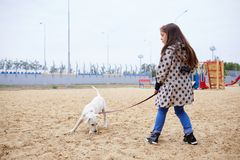 Beautiful young girl playing with dog outdoors. Pet concept. Cute girl kid with doggie playing in the playground. Having fun together outdoors on the nature Royalty Free Stock Image