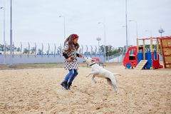 Beautiful young girl playing with dog outdoors. Pet concept. Cute girl kid with doggie playing in the playground. Having fun together outdoors on the nature Stock Photography