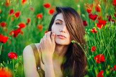 Beautiful young girl in poppy fields at sunset. stock images