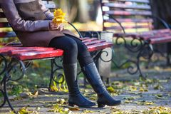 Beautiful young girl portrait sit on bench in park and relax, ye Stock Photography