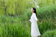 Beautiful young girl in the reeds in the summer Royalty Free Stock Images