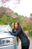 Beautiful young girl resting at side of her car at Stock Image