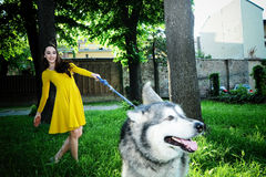 Beautiful young girl, running, smiling and carefree, in the mead. Ow, with his dog Royalty Free Stock Photography